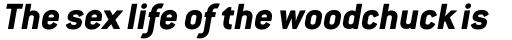 Conduit ExtraBold Italic sample