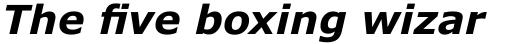 Verdana Pro Bold Italic sample