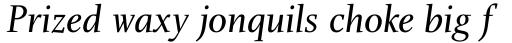 Charlotte Serif Book Italic sample