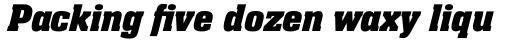 Neue Aachen Pro Bold Italic sample