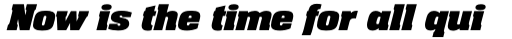 Neue Aachen Std Black Italic sample