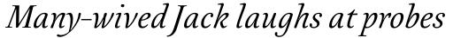 Australis Pro Italic sample