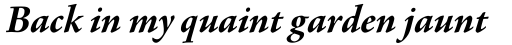 Agmena Pro Bold Italic sample
