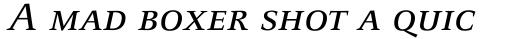 FF Celeste Small Text Std Regular Italic SC sample