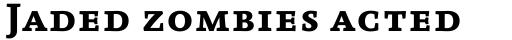 FF Absara Pro Bold SC sample