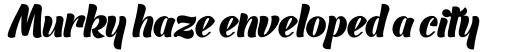 Barracuda Script Bold sample