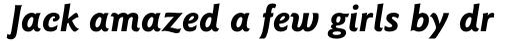 ITC Goudy Sans Std Bold Italic sample
