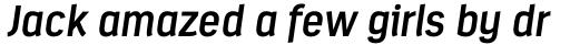 Estandar SemiBold Italic sample