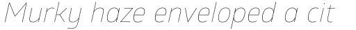 Glober Thin Italic sample