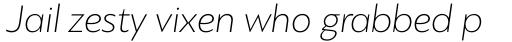 PF Bague Sans Pro Thin Italic sample