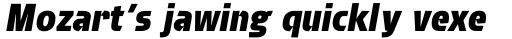 Brda Std Extra Bold Italic sample