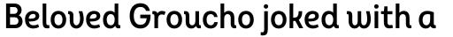 Intro Cond SemiBold Alt sample