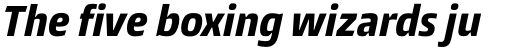 Burlingame Pro Condensed Extra Bold Italic sample
