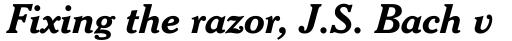 Cheltenham Std Bold Italic sample