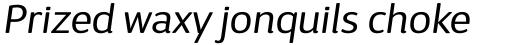 D Sari Book Italic sample