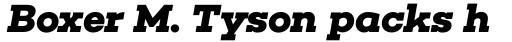 Choplin Bold Italic sample