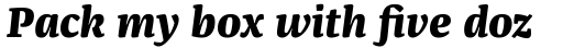 FF Franziska Pro Extra Bold Italic sample