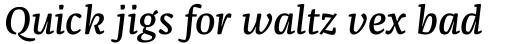 FF Franziska Pro Medium Italic sample