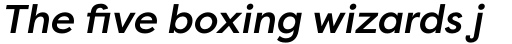 Filson Pro Medium Italic sample