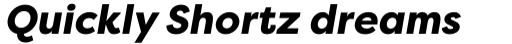 Filson Pro Heavy Italic sample