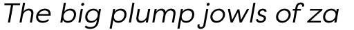 Filson Pro Book Italic sample