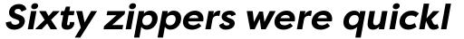 Filson Pro Bold Italic sample
