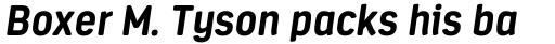 Estandar Rounded Bold Italic sample
