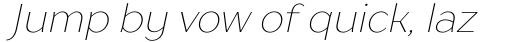 TT Drugs Thin Italic sample