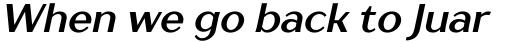 TT Drugs Bold Italic sample