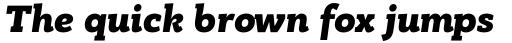 PF Bague Slab Pro Black Italic sample