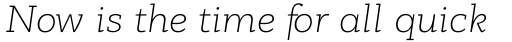 PF Bague Slab Pro Thin Italic sample