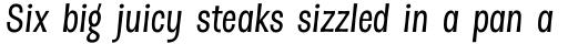 Dsert Alt Medium Italic sample