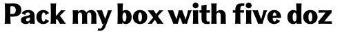 Clasica Sans Ultra Black sample