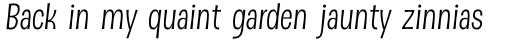 DSert Book Italic sample