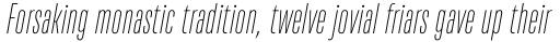 TT Bluescreens Thin Italic sample