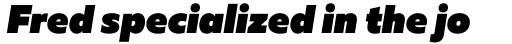 Muller Heavy Italic sample