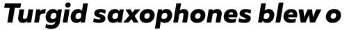 Muller Extra Bold Italic sample