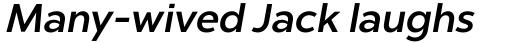 Chronica Pro Medium Italic sample