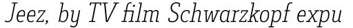 Decour Condensed Ultralight Italic sample