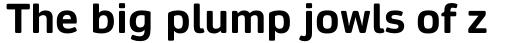 Daytona Pro Bold sample