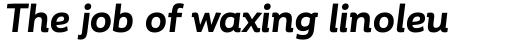 Corporative Alt Bold Italic sample
