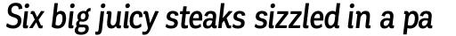 Corporative Condensed Medium Italic sample