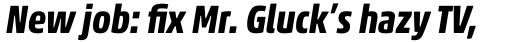 Akko Pro Condensed Bold Italic sample