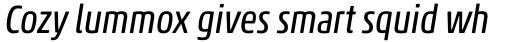 Akko Pro Condensed Italic sample
