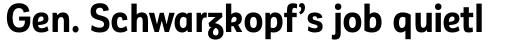 Corporative Sans Alt Condensed Bold sample