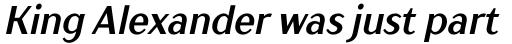 TT Drugs Condensed Bold Italic sample