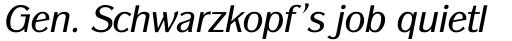 ITC Panache Book Italic sample