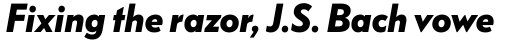 FF Bauer Grotesk Pro Bold Italic sample