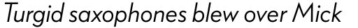 FF Bauer Grotesk Pro Regular Italic sample