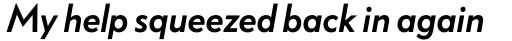 FF Bauer Grotesk Std Medium Italic sample